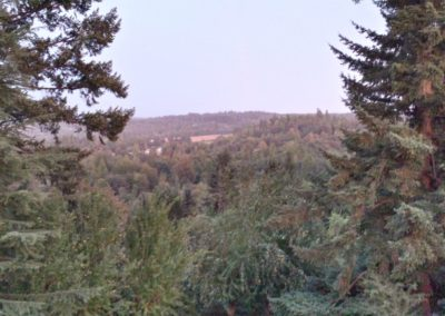18 hill valley home flip